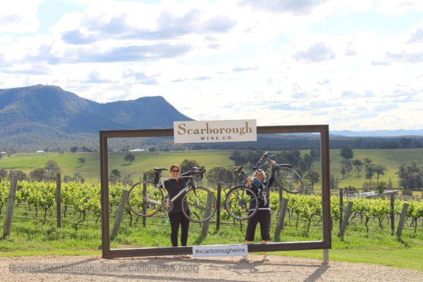 Scarborough Wines, two, bicycles being held up by the Scarborough sign.